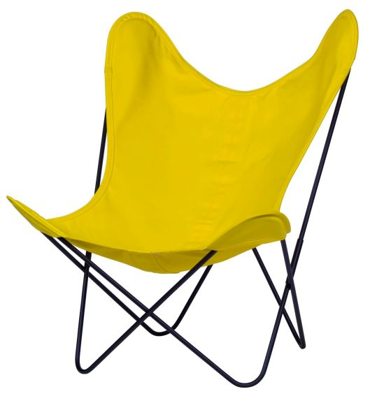 The Butterfly chair. The one back then was yellow.