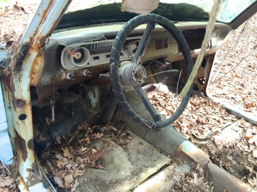 Steering wheel and gauges are there.